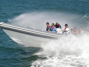 High speed rib ride for guests to enjoy the speed and thrill.